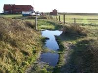 Bild 5 von Wanderwege zurzeit wegen Wasser nicht passierbar