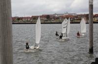 Bild 6 von Jugendabteilung zeigte bei Regatta beachtliche Leistungen