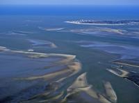 Bild 8 von Bei Ebbe offenbart das Wattenmeer seine Geheimnisse