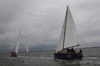 Bild 4 von Es wehte ein starker Wind bei diesjähriger Jubiläumsregatta