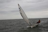 Bild 6 von Es wehte ein starker Wind bei diesjähriger Jubiläumsregatta