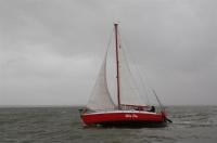 Bild 9 von Es wehte ein starker Wind bei diesjähriger Jubiläumsregatta
