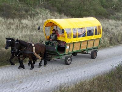 """Bild 0 von """"Schwalbennest"""" soll 1,2 Millionen Euro in die Gemeindekasse bringen"""
