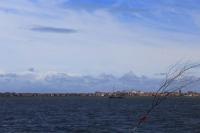 Bild 3 von Seehundbänke sind immer ein beliebtes Ausflugsziel