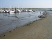 Bild 4 von Boots- und Fährhafen bereiten SKJ und Inselgemeinde große Sorgen