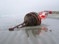 Bild 0 von Osterems-Ansteuerungstonne liegt auf dem Juister Strand