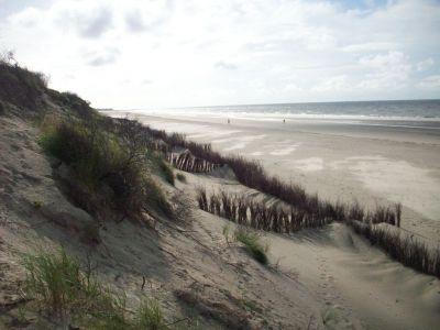 Bild 0 von 61,6 Millionen Euro für den Küstenschutz in 2017
