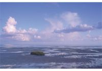 Bild 0 von Zum Wattenmeergeburtstag nach Juist: Übernachten unter Sternen