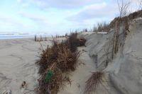 Bild 7 von Dünenabbrüche und Strandmüll bewegen die Inseln