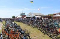 Bild 8 von Inselgastronom über Musikfestival: Es war ein Traum!
