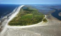 Bild 2 von Küstenschutzvorhaben an der Bill beginnt in der kommenden Woche
