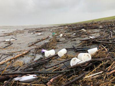 Bild 0 von Konzept zur Müllreduktion wird Vermietbetrieben vorgestellt