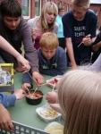 Bild 6 von Zwei erlebnisreiche Projekttage an der Inselschule