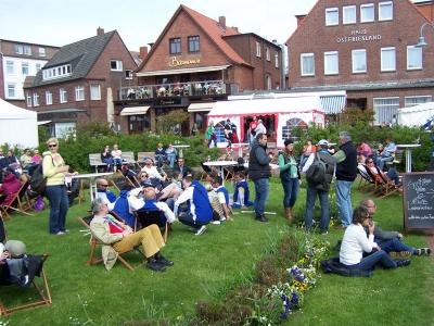 Bild 0 von Töwerland-Musikfestival begann mit viel Sonnenschein
