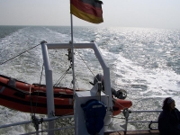 Bild 2 von 3.500 Inselflaggen schmückten Borkum zum Inseltreffen