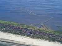 Bild 1 von Bei Ebbe offenbart das Wattenmeer seine Geheimnisse