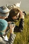 Bild 0 von Den herbstlichen Vogelzug im Wattenmeer erleben