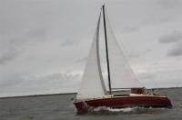 Bild 7 von Es wehte ein starker Wind bei diesjähriger Jubiläumsregatta