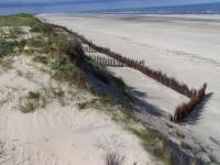 Bild 4 von Sandtransporte am Hammersee sind im vollen Gange