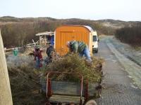 Bild 2 von Juist-Stiftung führte Frühjahrsputz am Goldfischteich durch
