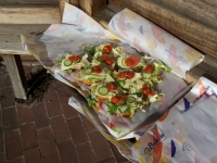 Bild 8 von Juist-Stiftung führte Frühjahrsputz am Goldfischteich durch