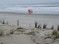 Bild 2 von Osterems-Ansteuerungstonne liegt auf dem Juister Strand