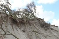 Bild 5 von Dünenabbrüche und Strandmüll bewegen die Inseln