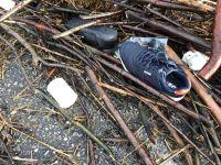 Bild 0 von Strandreinigung war auch Thema im Bäderausschuss
