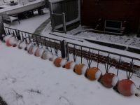 Bild 6 von Endlich fiel auf Juist mal wieder Schnee